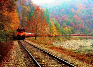 Fall-GSMR-300x214.jpg