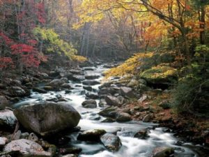 Little-River-300x225.jpg