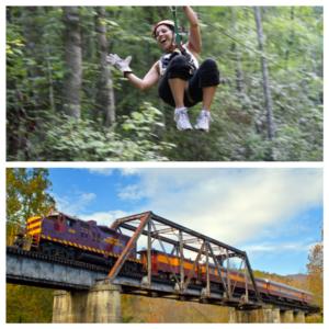 Tarzan Train - Zip and Rail